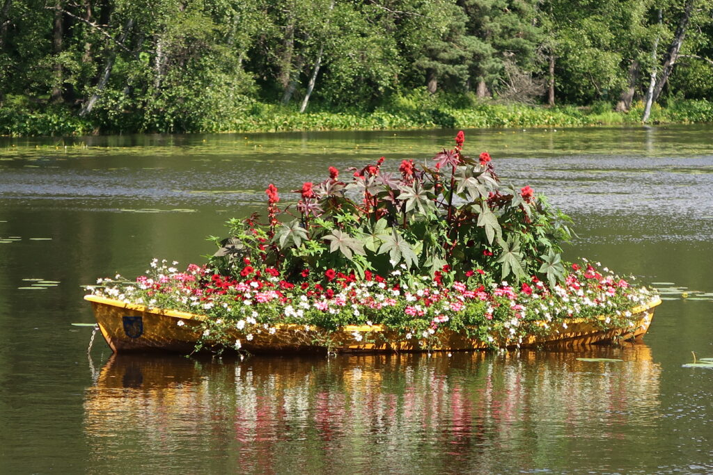 Järvellä kelluva vene, johon on istutettu kukkia.