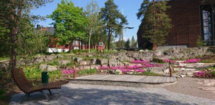 Kallioinen Odenwallin puisto, minne on istutettu kukkivia kalliokasveja ja rakennettu puinen oleskelutaso. Taustalla näkyy Uusi Paviljonki.