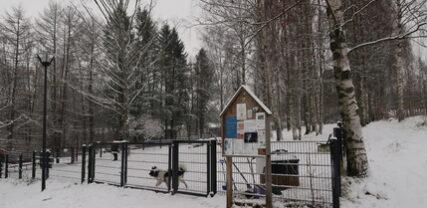 Koirapuisto talvella
